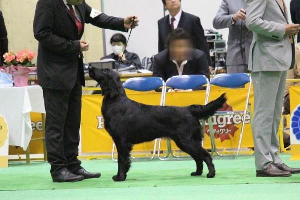 Japan_inter_nona_g02_1_2